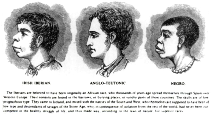 http://thomasnastcartoons.files.wordpress.com/2013/12/scientific_racism_irish-1899.jpg